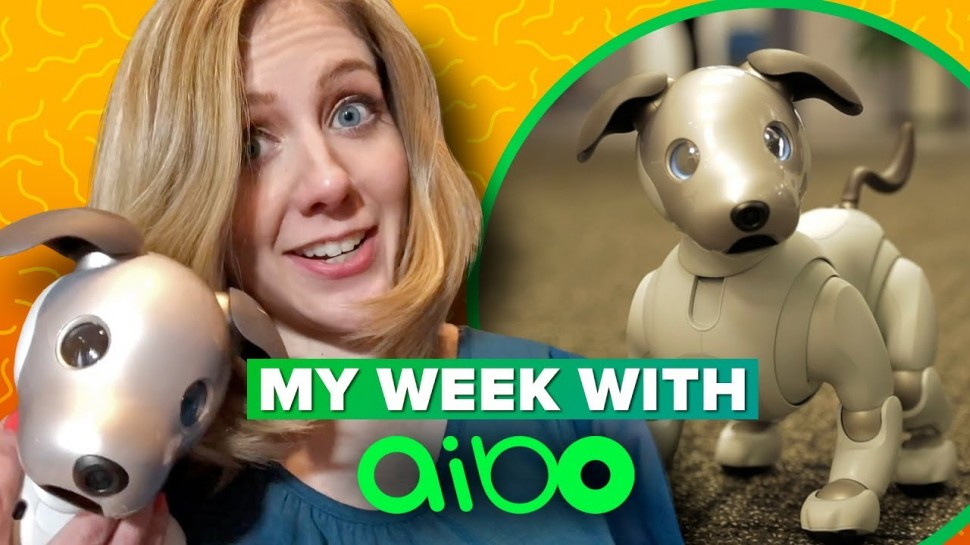 CNET: Sony Aibo: what it's like to live with a robot dog