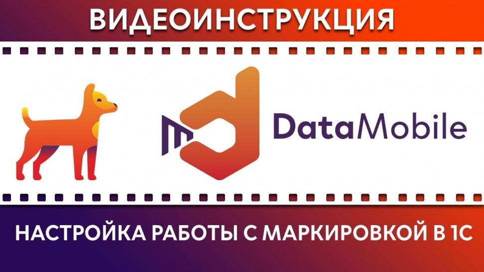 СКАНПОРТ: DataMobile: Урок №17. Настройка работы с маркировкой в 1С