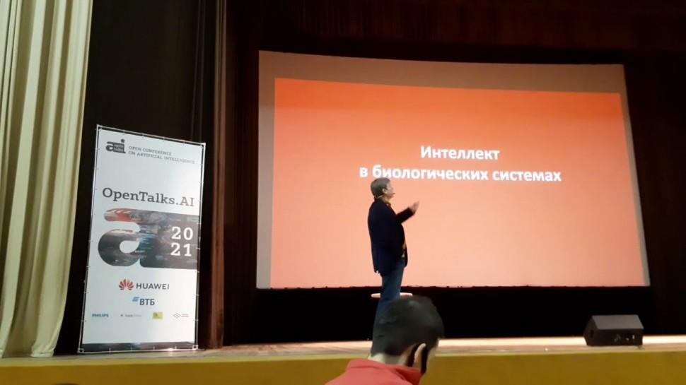 siberai: нейрореалистичный искусственный интеллект - доклад К. В. Анохина на конференции OpenTalks.A