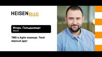 Heisenbug: Игорь Гольдшмидт — TMS в Agile-команде. Твой верный друг - видео