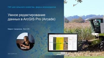 ГИС: Проверка корректности ввода геоданных - видео