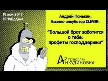 Технопарк «Анкудиновка»: Андрей Панькин - профиты господдержки