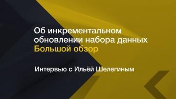 IQBI: Инкрементальное обновление набора данных // Интервью с Ильей Шелегиным - видео