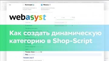 Webasyst: Как создать динамическую категорию в Shop-Script - видео
