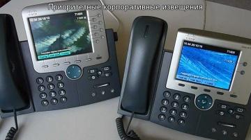 Aurus PhoneUP Объявления (IP телефония Cisco)