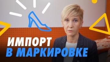 СКБ Контур: Маркировки импорта: обуви как организовать процессы