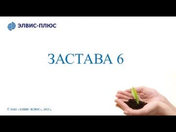 ЭЛВИС-ПЛЮС: Что нового в «ЗАСТАВА 6»? - видео
