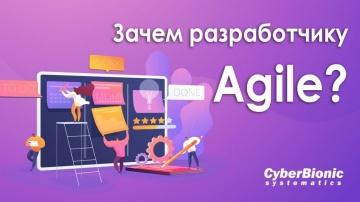 DevOps: Зачем разработчику Agile? - видео