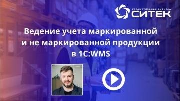 СИТЕК WMS: Ведение учета маркированной и не маркированной продукции в 1С:WMS - видео
