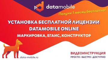 СКАНПОРТ: Инструкция активации бесплатной лицензии DataMobile Online с модулями Маркировка, ЕГАИС, К