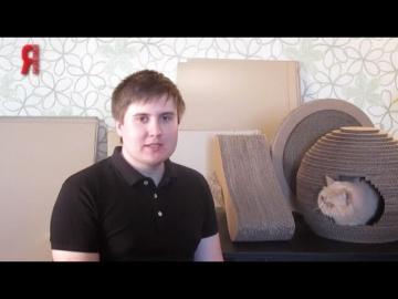 СКБ Контур: ЯБ2016 Мебель для кошек «Purrfect Place»
