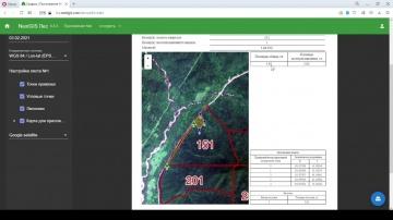 ГИС: NextGIS Лес. Приложение 4 (приказ Минприроды № 539 от 30.07.2020) - видео